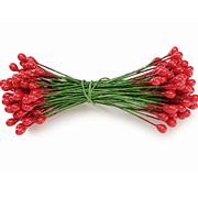 Red Stamen