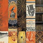 Wonderfully Wicked 12x12 Paper Collection Pack