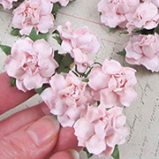 1 Inch Curly Paper Roses - Pale Pink*