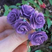 1 Inch Purple Paper Roses*