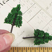 2 Inch Pine Trees