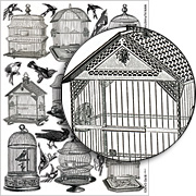 Bird Cage Collage Sheet