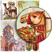 Camels Collage Sheet