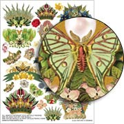 Natures Crowns Collage Sheet