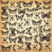 75 Cents Butterfly Spot Varnish Paper