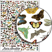 Shadow Box Bugs & Bats Collage Sheet