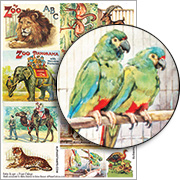 A Trip to the Zoo #1 - Parrots Collage Sheet