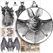 Victorian Bats Collage Sheet
