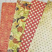 Autumn Kit Extra Paper Set