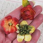 Autumn Flower Mix