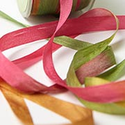 Autumn Variegated Silk Ribbon