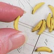Bananas - Set of 12