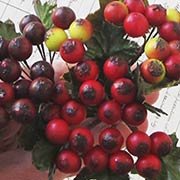 Mixed Matte Red, White & Burgundy Berry Sprigs
