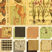 Botanicabella 12x12 Paper Pad - Deluxe Collector&#39s Edition