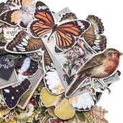 Tim Holtz Botanical Die Cuts
