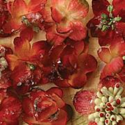 Botanica Sugared Mini Blooms - Burgundy Red