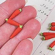 Carrots - Set of 12