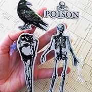 Birds and Bones Cling Stamp Set