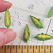 Miniature Corn - Set of 6