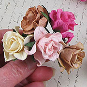 Gardenias - Cream-Pink-Brown*