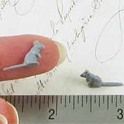 Tiny Grey Mouse