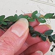 Tiny Green Leaf Garland