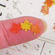 Miniature Autumn Leaves