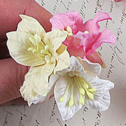 Mulberry Paper Lily Mix*