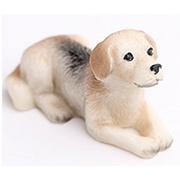 Beagle Lying Dog
