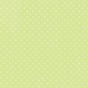 Double Dot Mint Green Scrapbook Paper