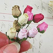 Mini Rose Buds - Cream-Pink-Brown*