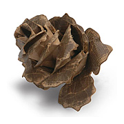Tim Holtz Jumbo Tattered Pinecone Die