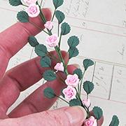 Mini Pink Climbing Roses