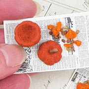 Carved Pumpkin on Newspaper