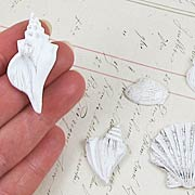Shabby Chic Seashells
