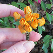 Small Rose Buds - Orange*