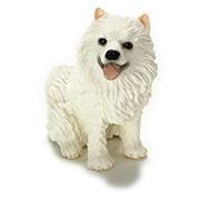 Samoyed Sitting Dog