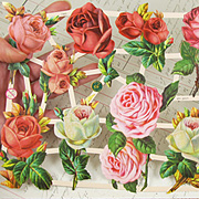 Red and Pink Cottage Roses Dresden Scraps