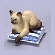 Brown Siamese Sitting Cat