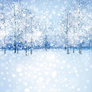 White Christmas Snowy Trees Scrapbook Paper