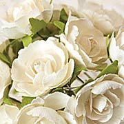 Soprano White Paper Roses*