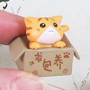 Cat in a Box - Tabby
