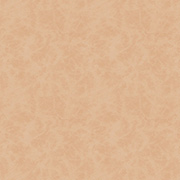 Tan Leather Scrapbook Paper