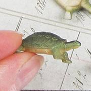 Mini Turtle